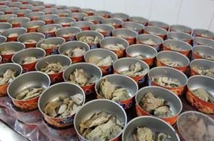 کشف حدود 2 تن ماهی فاسد در آستارا