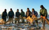 مهلت صید ماهیان استخوانی از دریای خزر تا ۲۰ فروردین تمدید شد